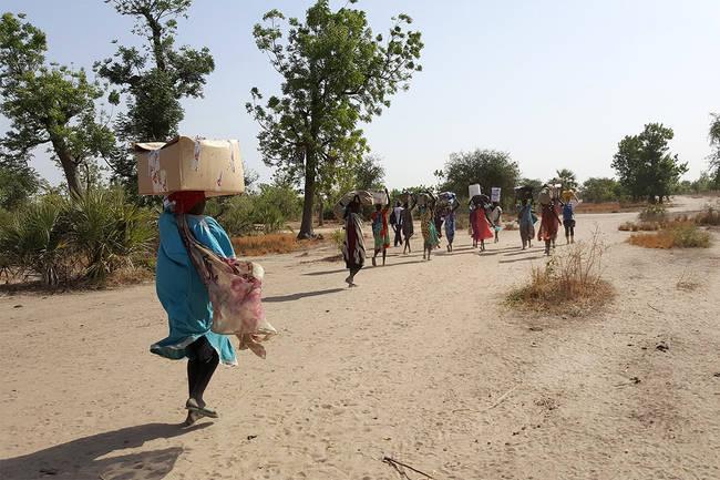 Soudan du Sud : l'enlisement du conflit à l'origine d'une crise nutritionnelle