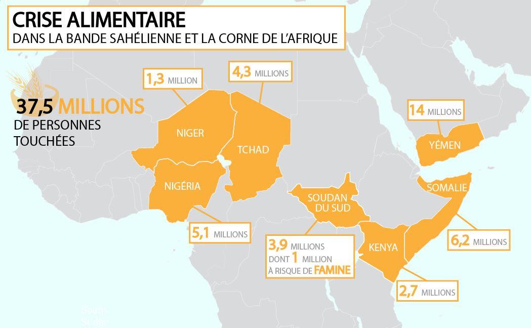 ACTED mobilisée face à l'urgence alimentaire en Afrique