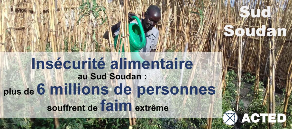 La mobilisation en réponse à l'urgence alimentaire au Sud Soudan continue