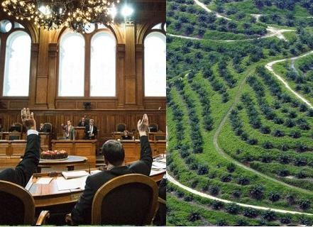 Mauvais compromis de la commission du Conseil des États suisse : la coalition sur l'huile de palme réagit avec une pétition