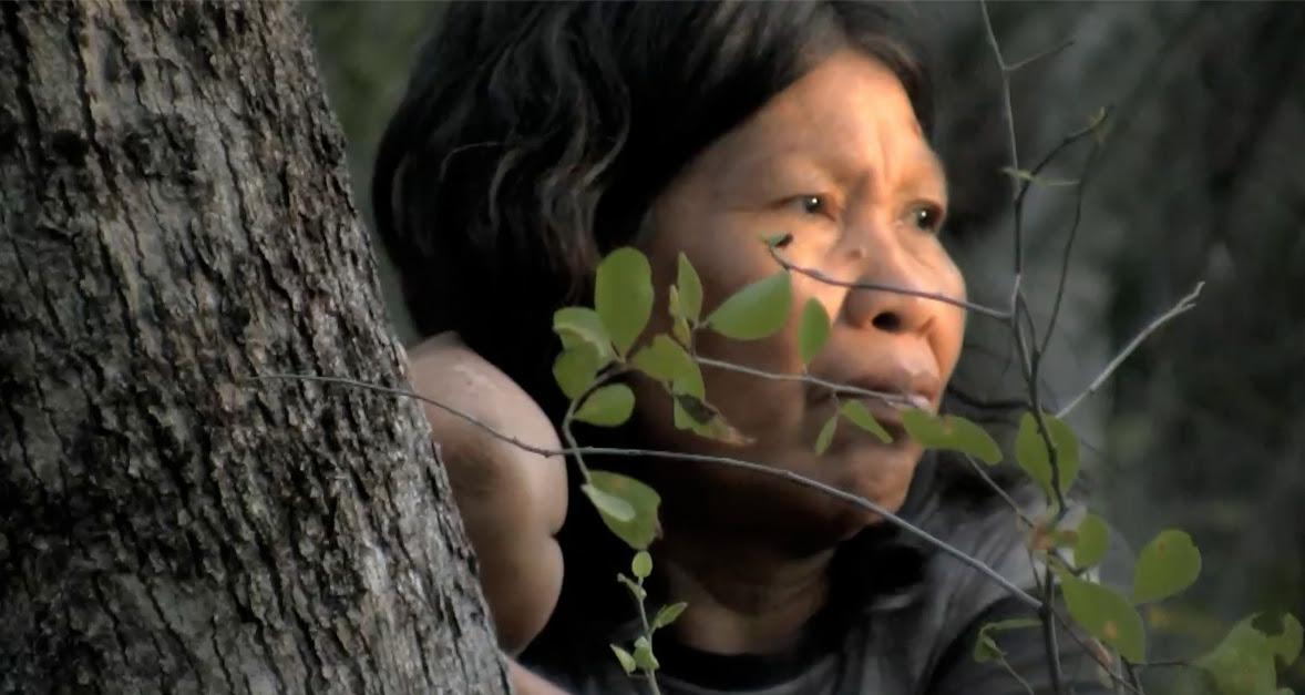 Action urgente : la dernière tribu isolée du Paraguay