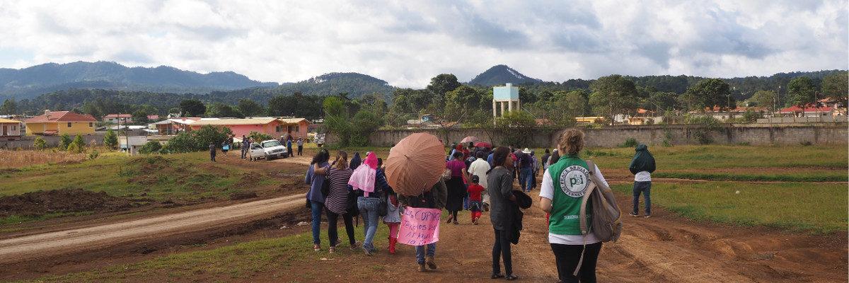 Le Guatemala, le Honduras et le Mexique recherchent des volontaires pour le terrain