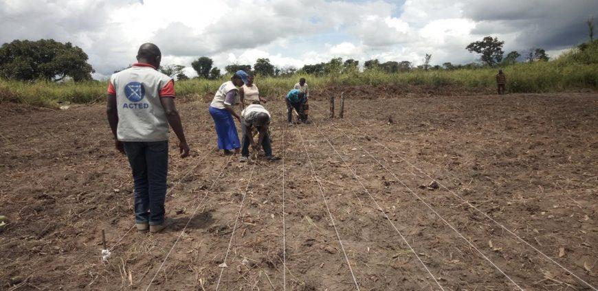 Relancer l'agriculture dans le territoire de Pweto pour une résilience durable