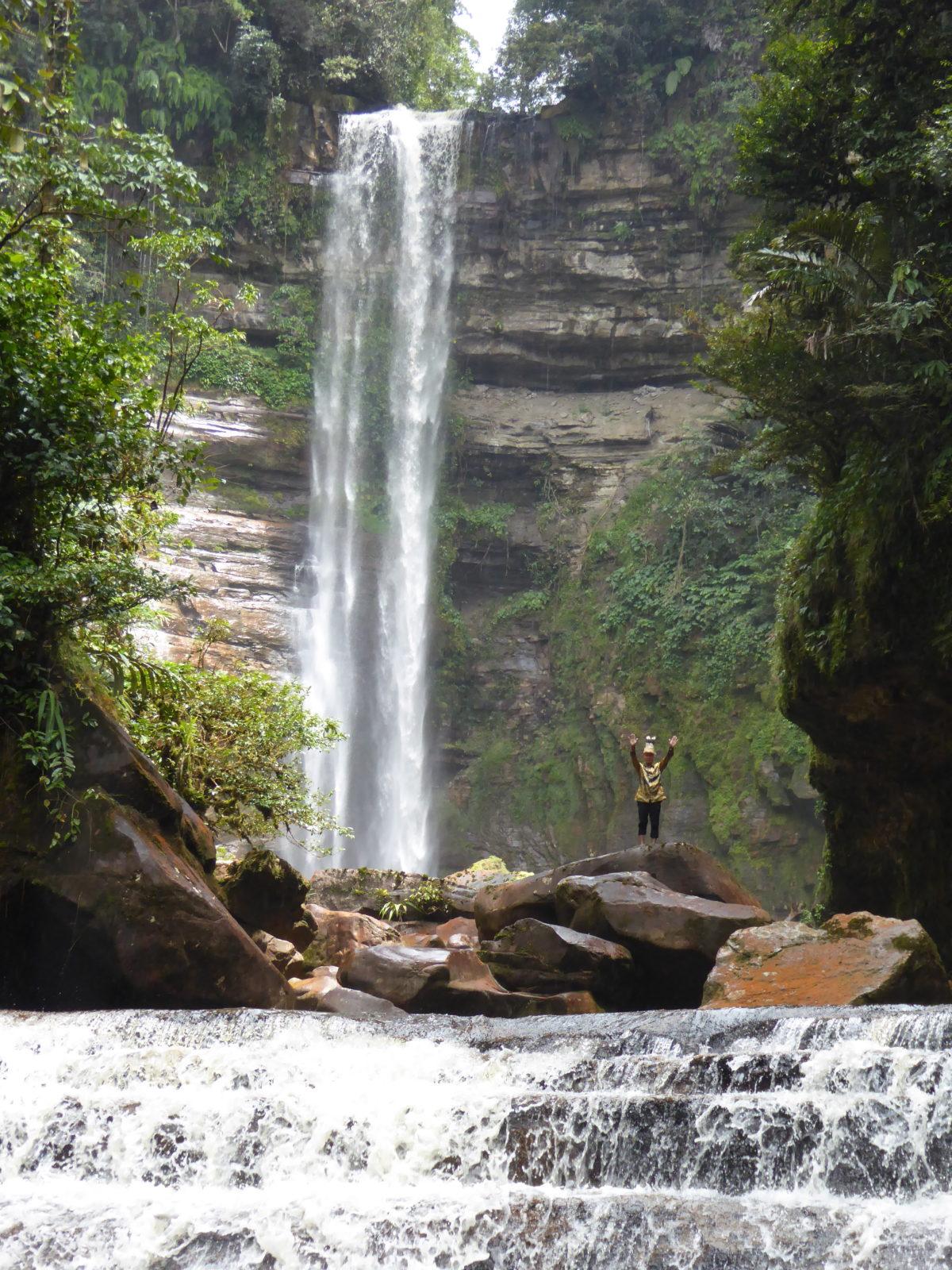 Le Bruno Manser Fonds salue l'engagement bâlois en faveur des forêts tropicales