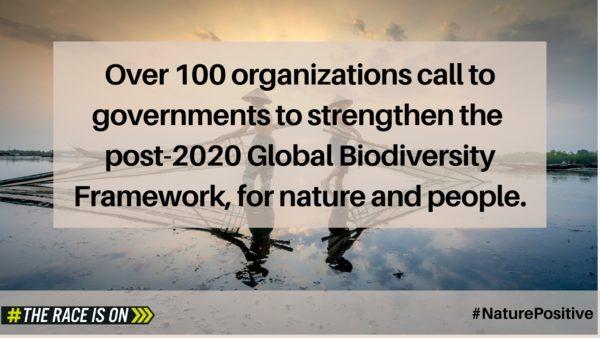 ACTED signe l'appel à l'action des acteurs non-étatiques pour que les gouvernements renforcent le cadre mondial de la biodiversité post-2020